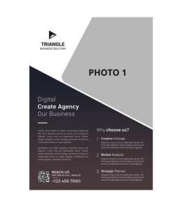 psd company brochure