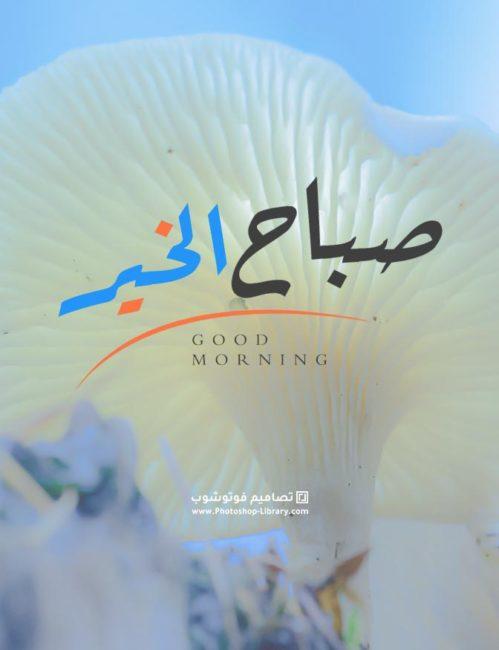 بطاقات صباح الخير روعه ، صور صباحيه ، Good Morning ، صور صباح خير ، للصباح 2021