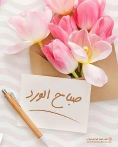 اجمل صور وخلفيات صباح الورد روعه راقية. احلى بوستات بطاقات ورمزيات كروت معايدات صباح الورد للاحباب منشورات جميلة تويتر.