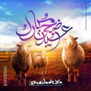 كل عام وانتم بخير عيد اضحى مبارك