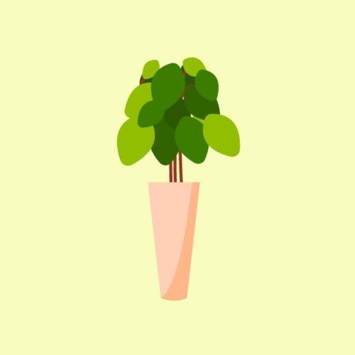 فيكتور اصيص اوراق نبات خضراء potted plant leaves eps, ai vector, design, file للتصميم مفتوح قابل للتعديل على اليستريتور مجانا .